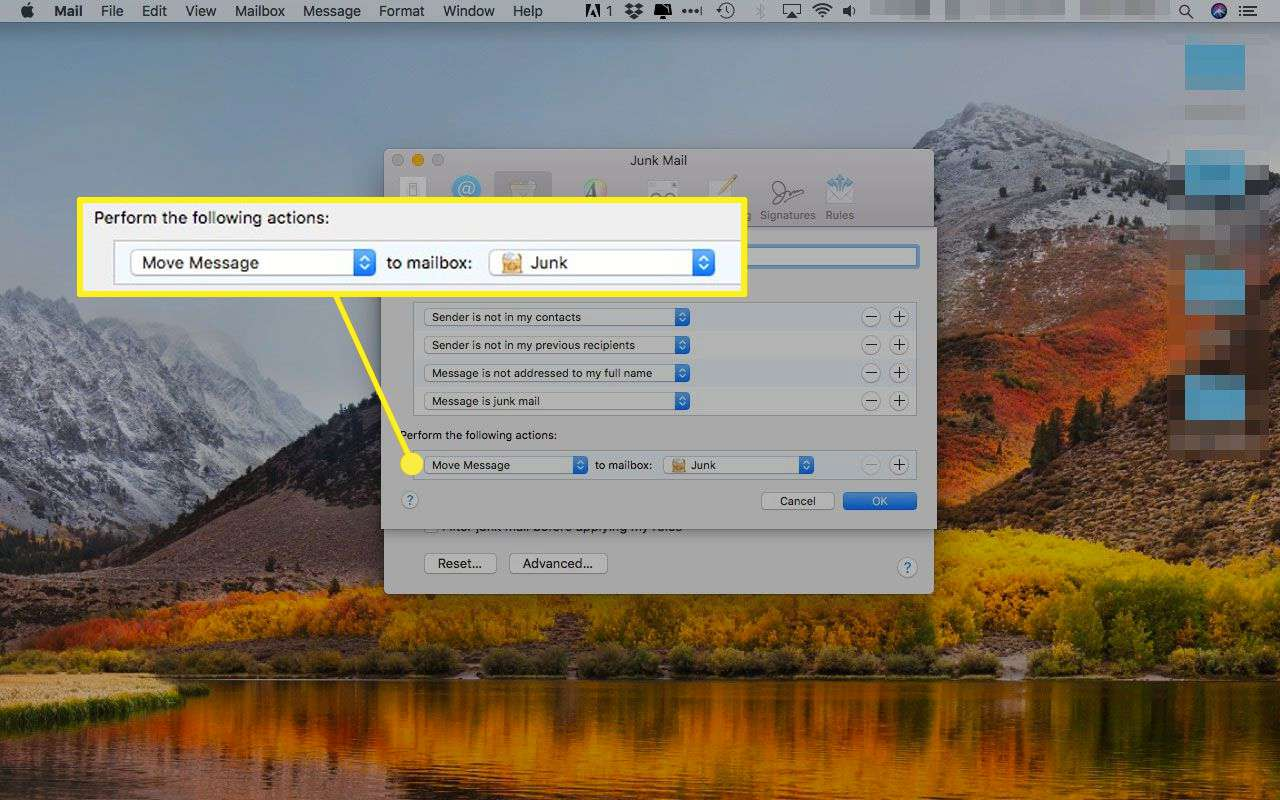 Apple Mail's Advanced settings for Junk Mail