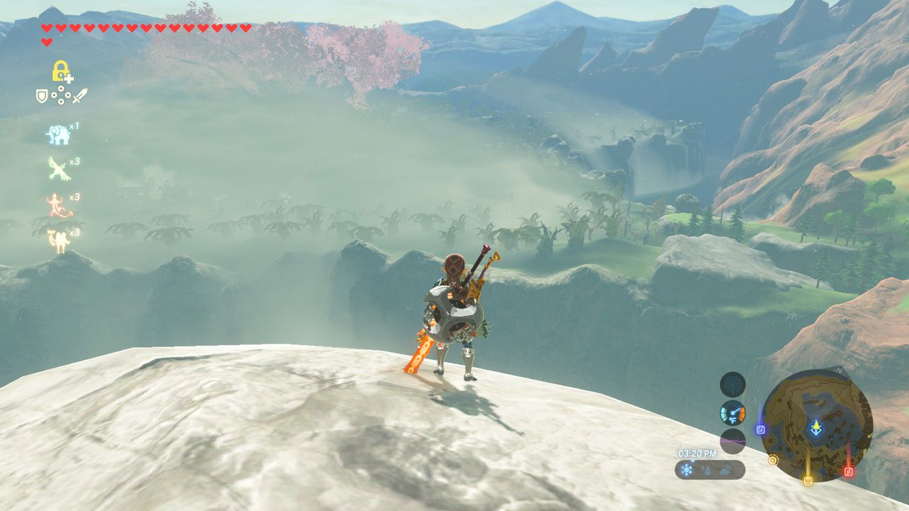 Looking at Lost Woods from atop the Woodland Tower in The Legend of Zelda: Breath of the Wild.