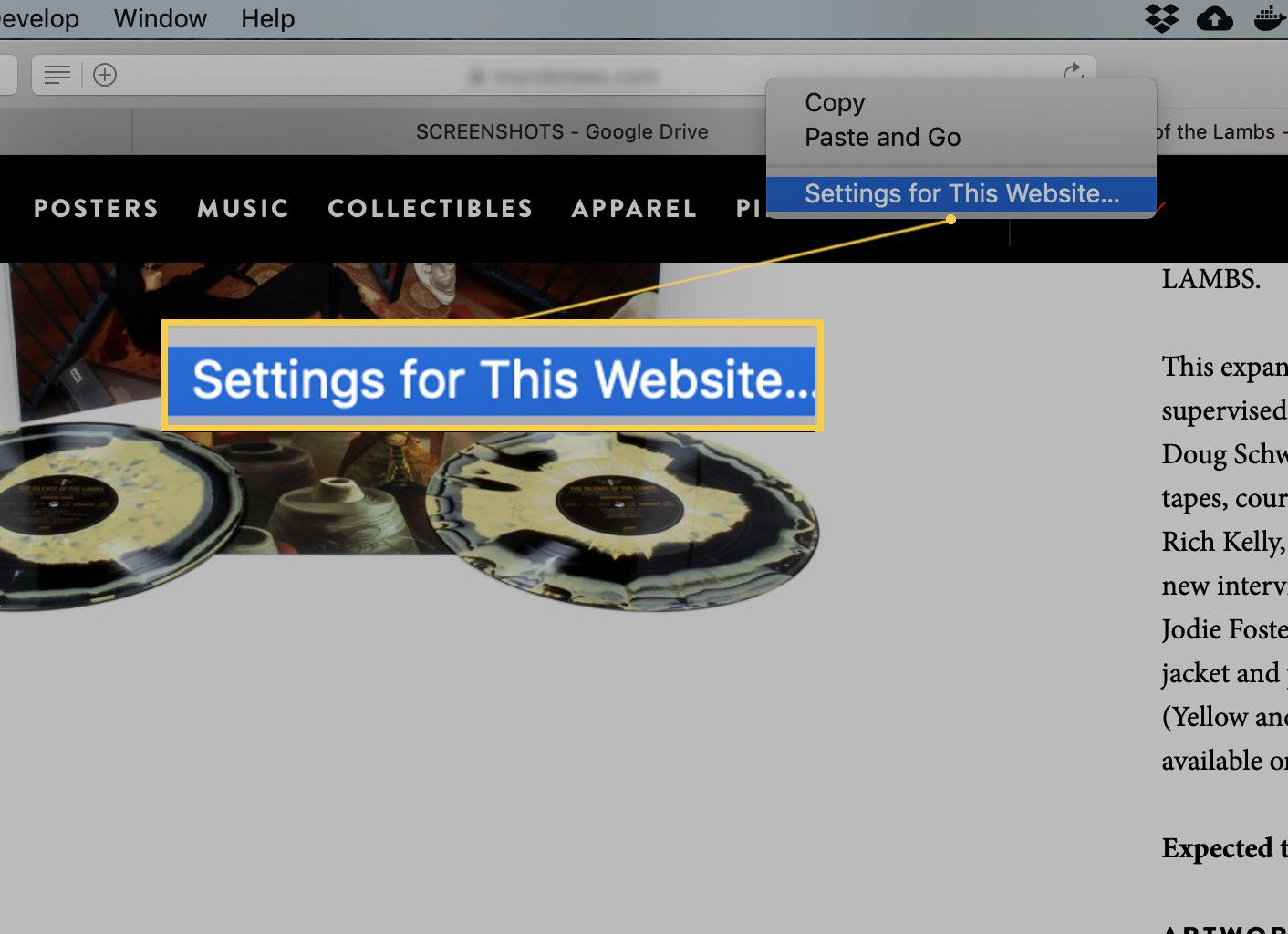 Screenshot of the Settings for This Website option in the addressbar drop-down.