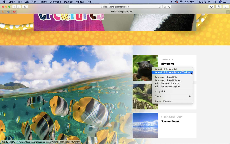 Open a link in a private window in Safari