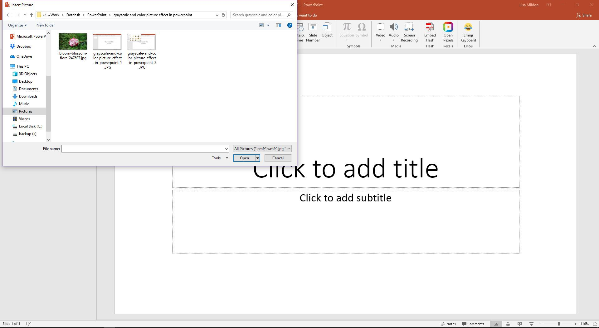 PowerPoint displaying the Insert Pictures dialog.