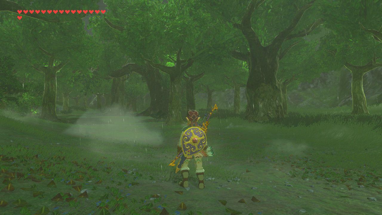Finding Despair memory in The Legend of Zelda: Breath of the Wild.