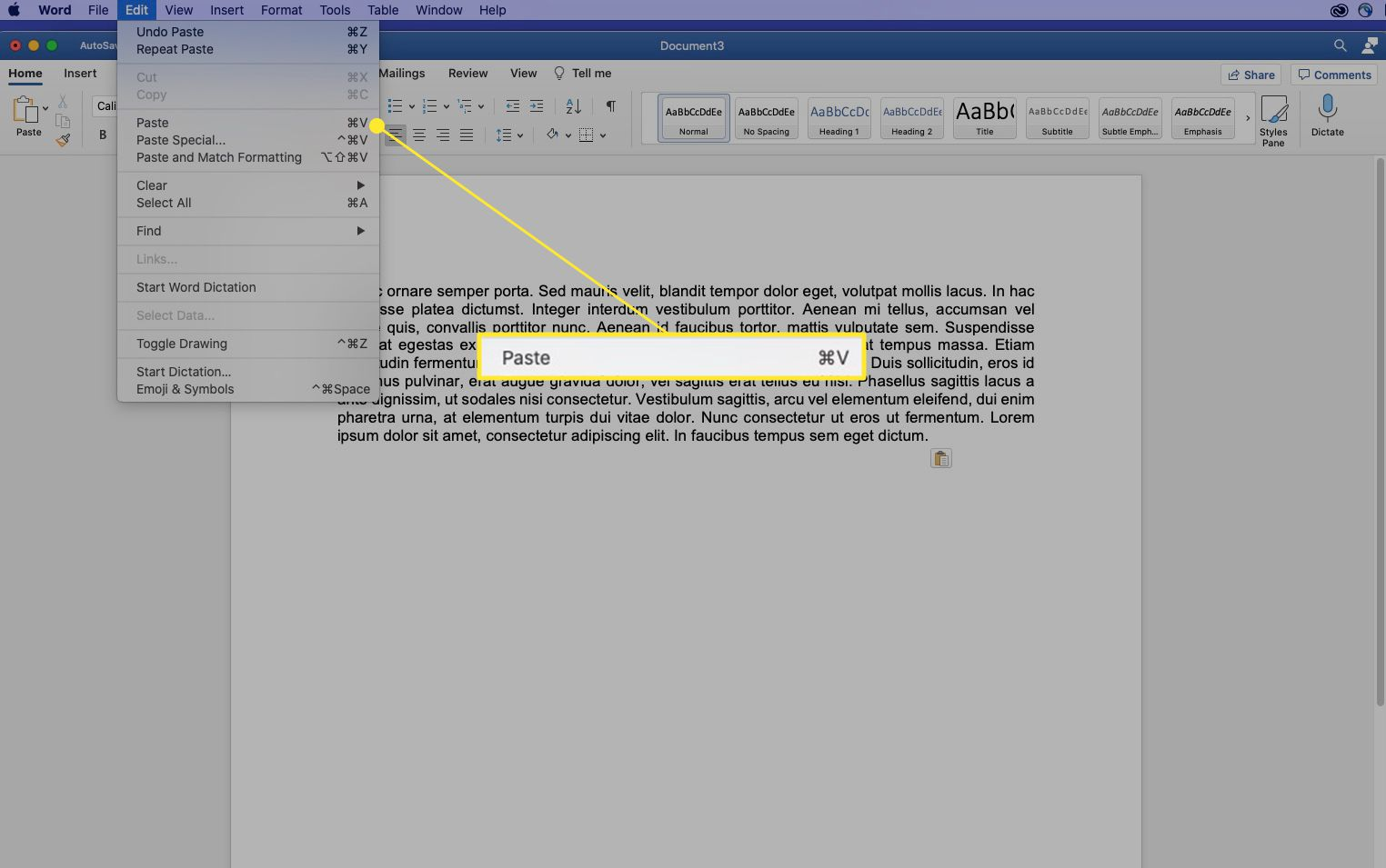 Word on a Mac with the Paste command highlighted