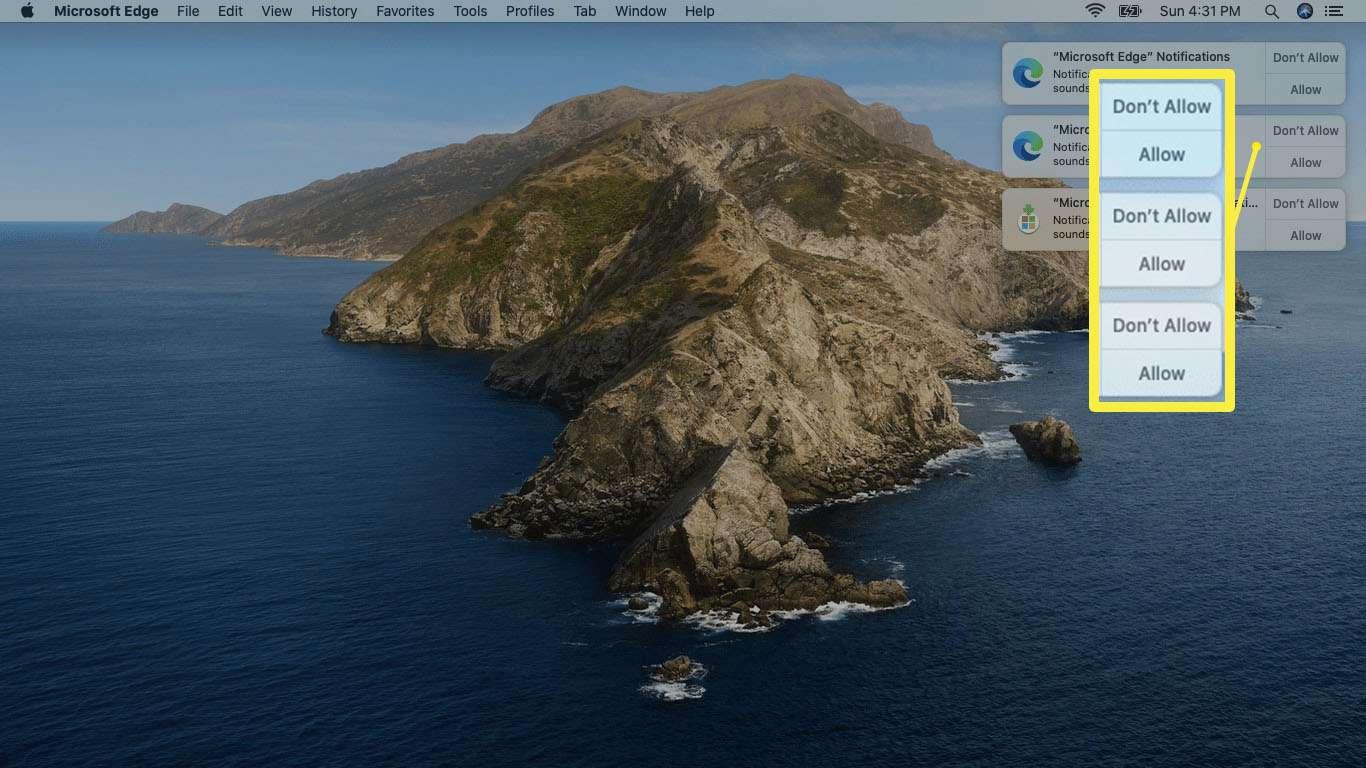 A screenshot of Edge alert permission requests on Mac.