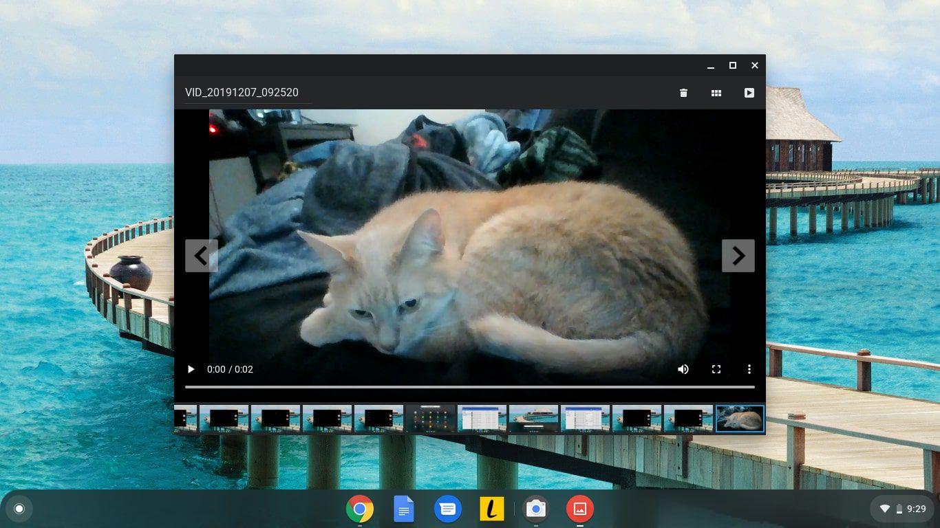 The Chromebook Camera app preview screen