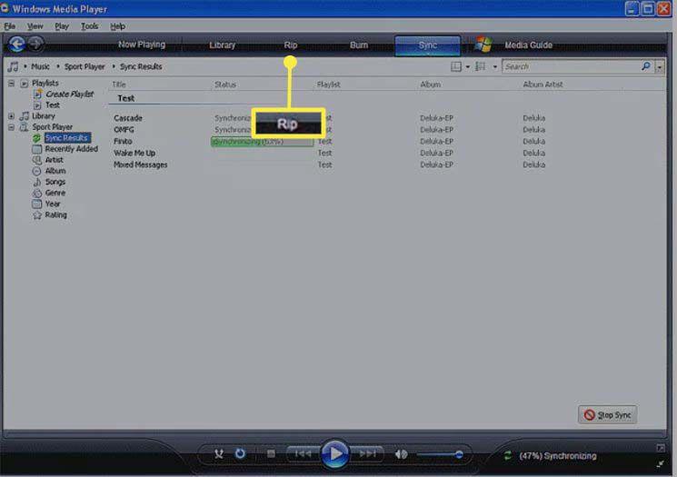 Windows Media Player 11 Rip tab selected