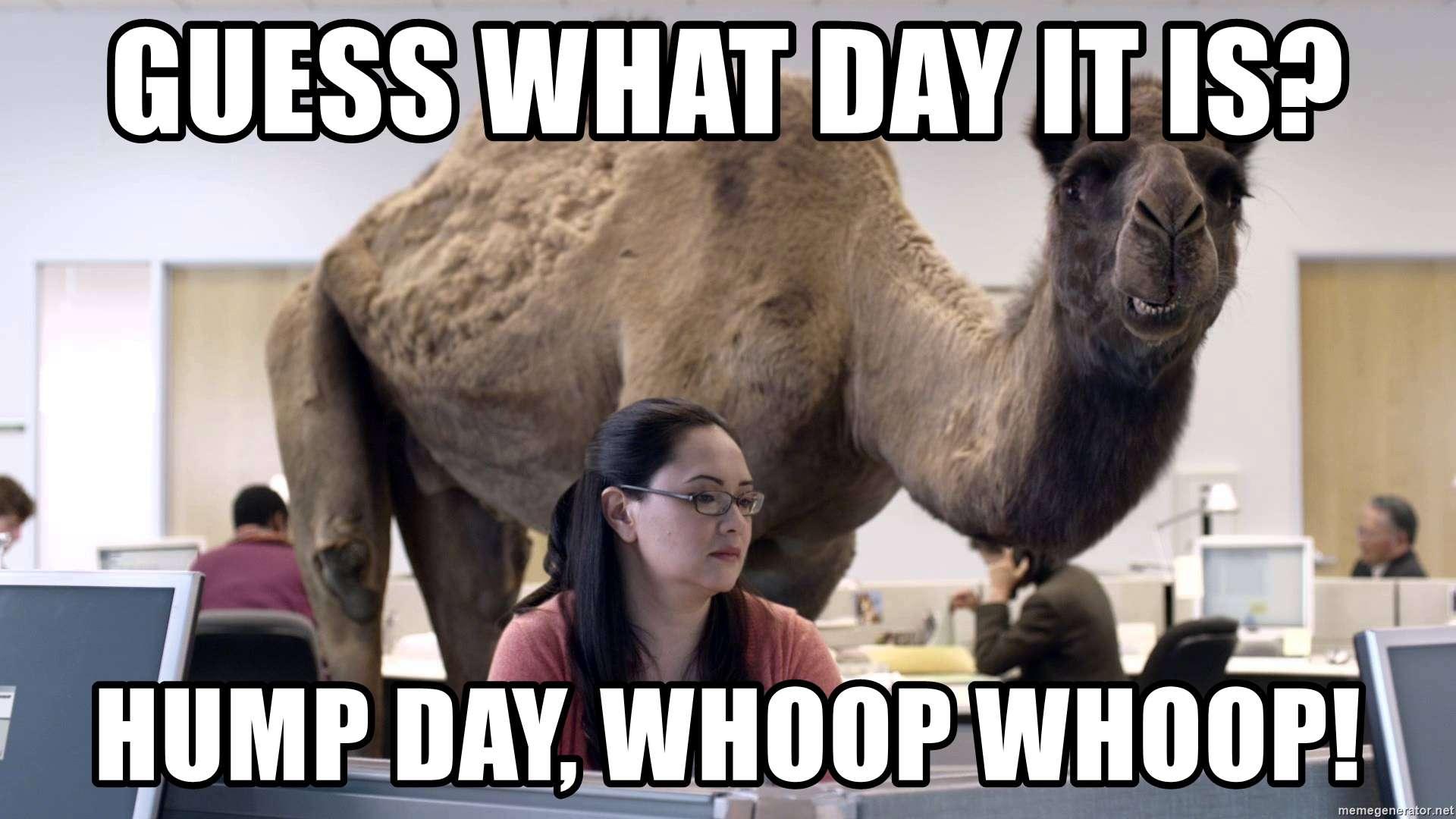 Meme Hump Day