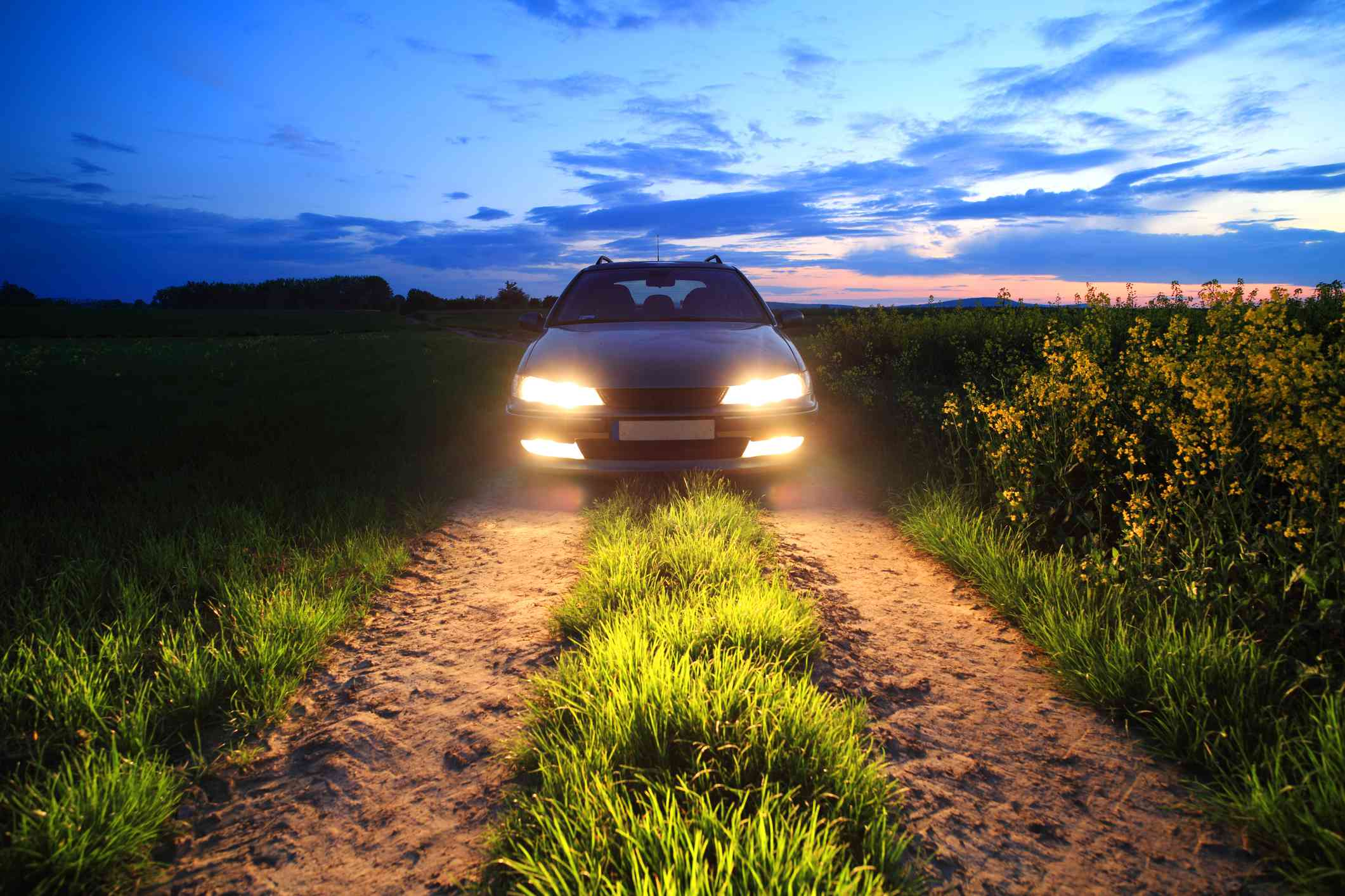 Headlights on a car in a field