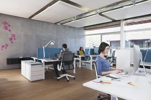 People using Macs in office space
