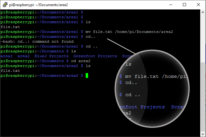 Move files with the mv command