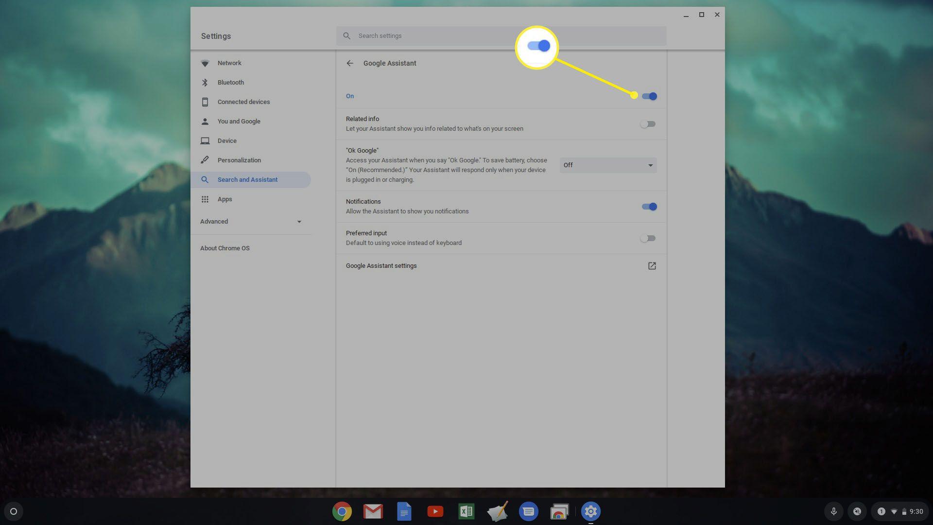 Google Assistant options