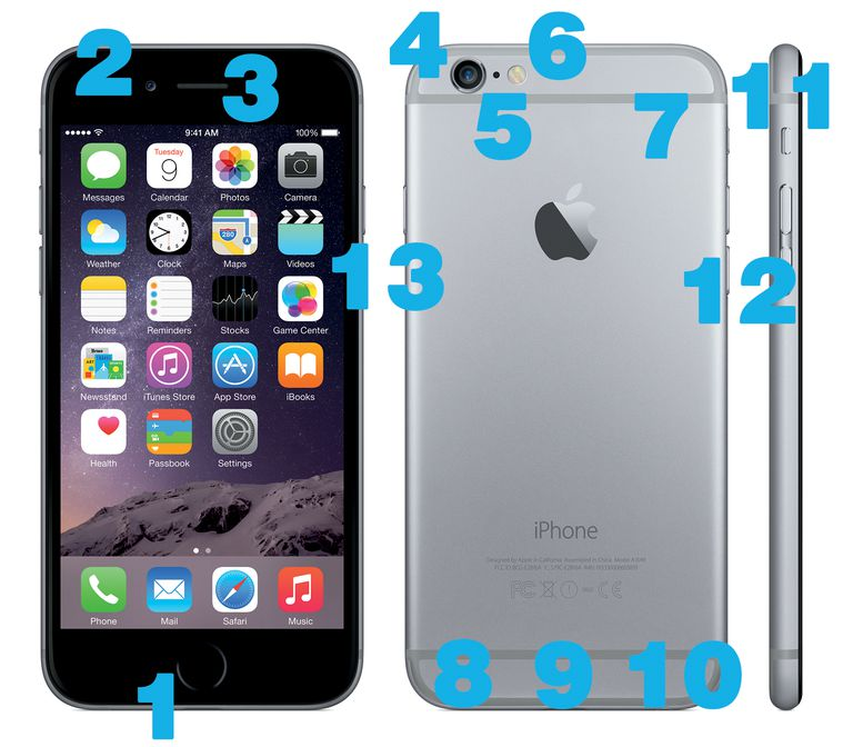 Iphone 6 And Iphone 6 Plus Hardware Diagram