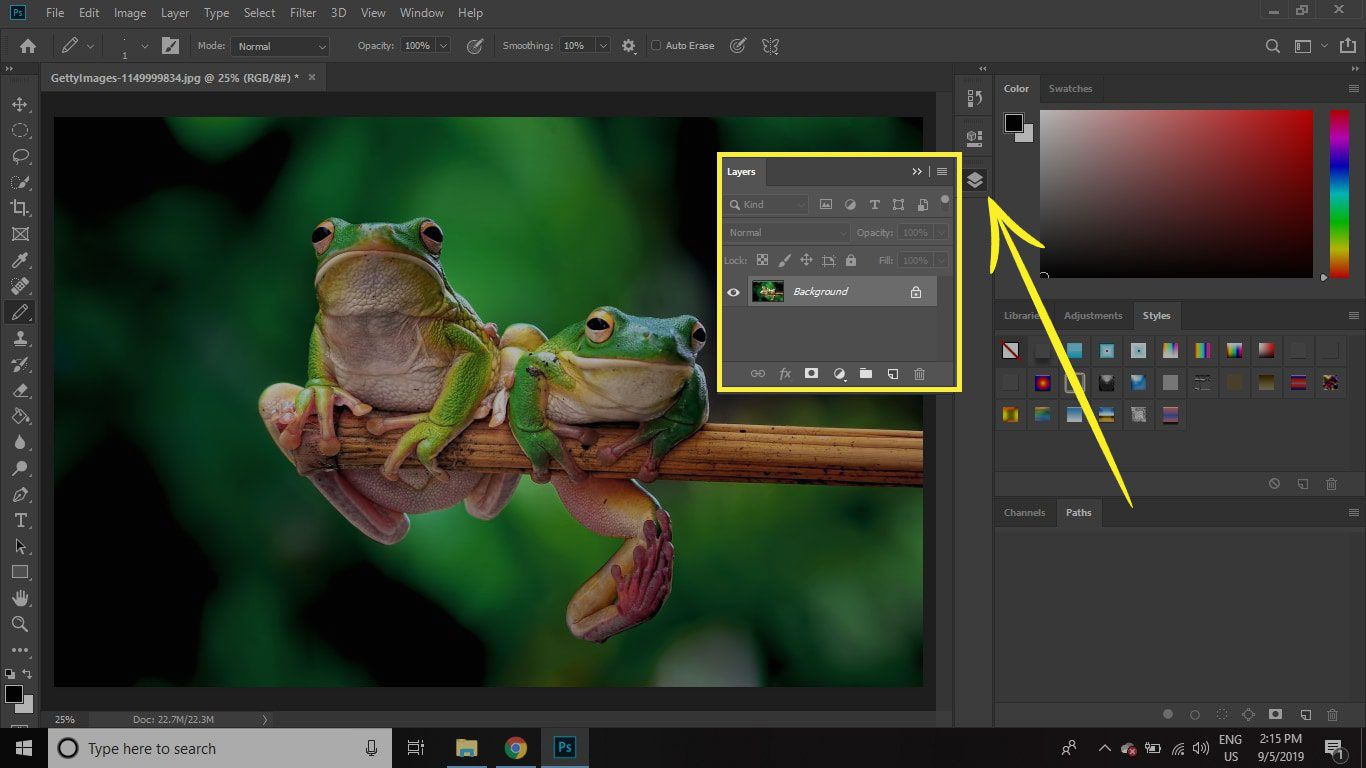A screenshot of Photoshop with the Palette Well highlighted