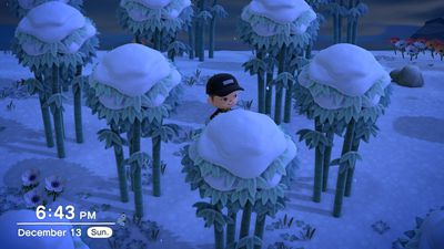 A bamboo forest in Animal Crossing: New Horizons