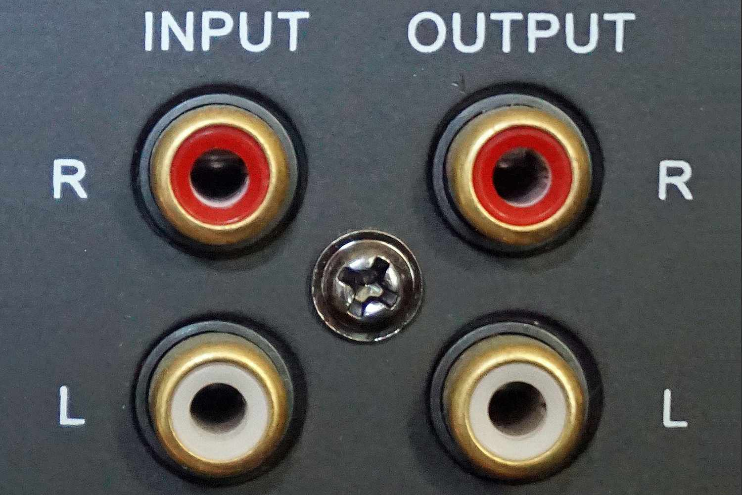 Subwoofer with Input and Output Connections