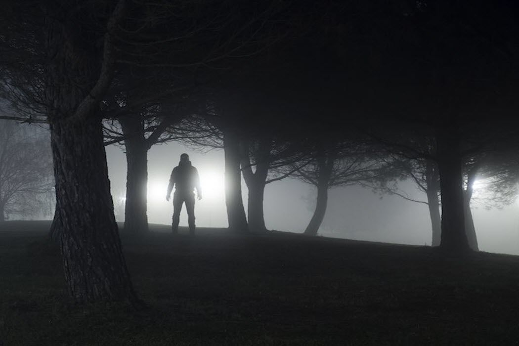 The silhouette of a man standing in a haunted woods.