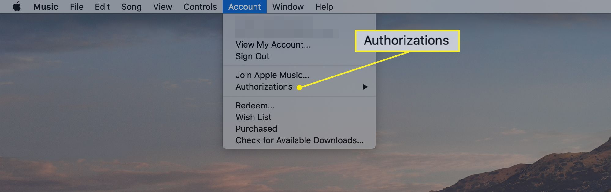 Music menu bar with Account selected and Authorizations chosen