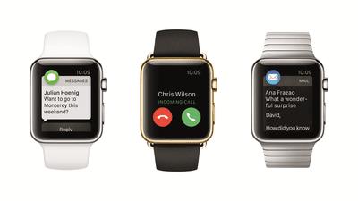 Three Apple Watch styles