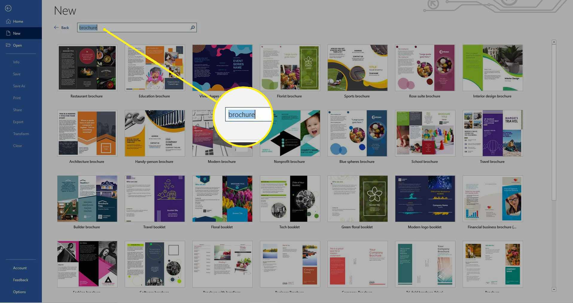 How to Make a Brochure in Microsoft Word Within Ms Word Brochure Template