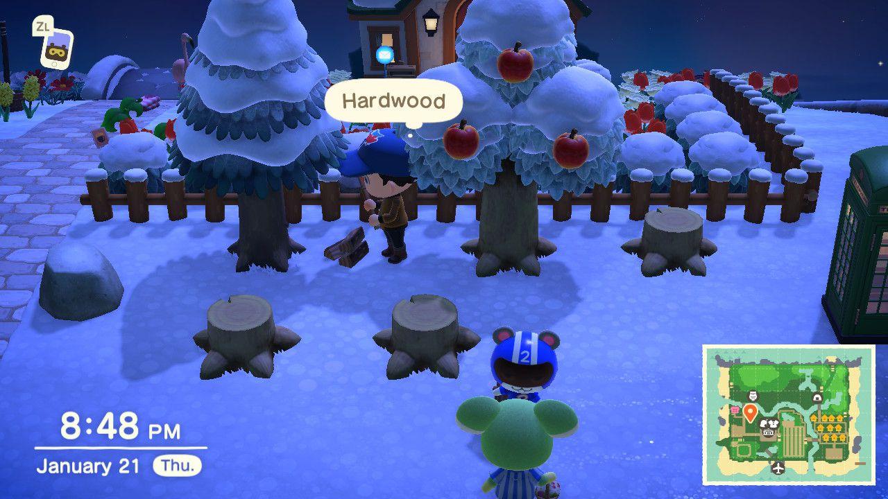 Picking up hardwood in Animal Crossing: New Horizons