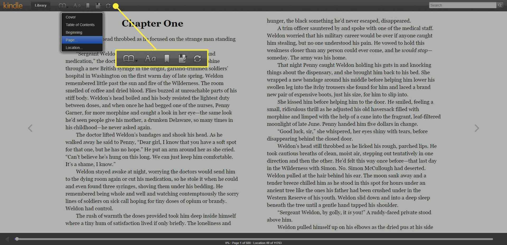 Menu items in Kindle Cloud Reader