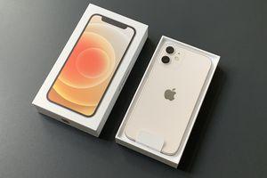 The iPhone 12 mini, in the box.