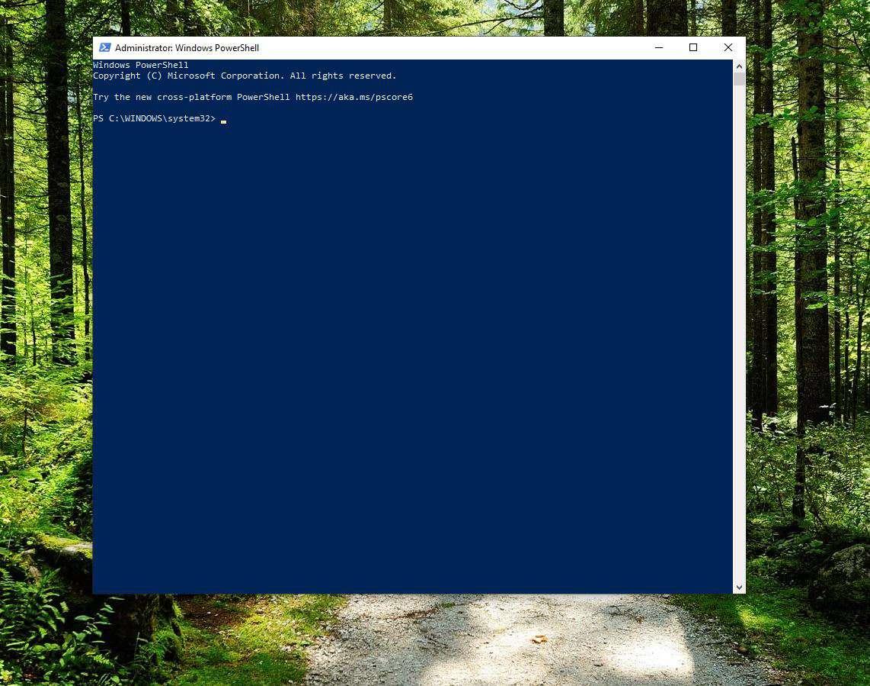 Screenshot of PowerShell