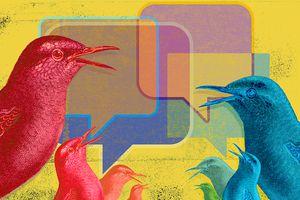 Stylized birds with message windows around them