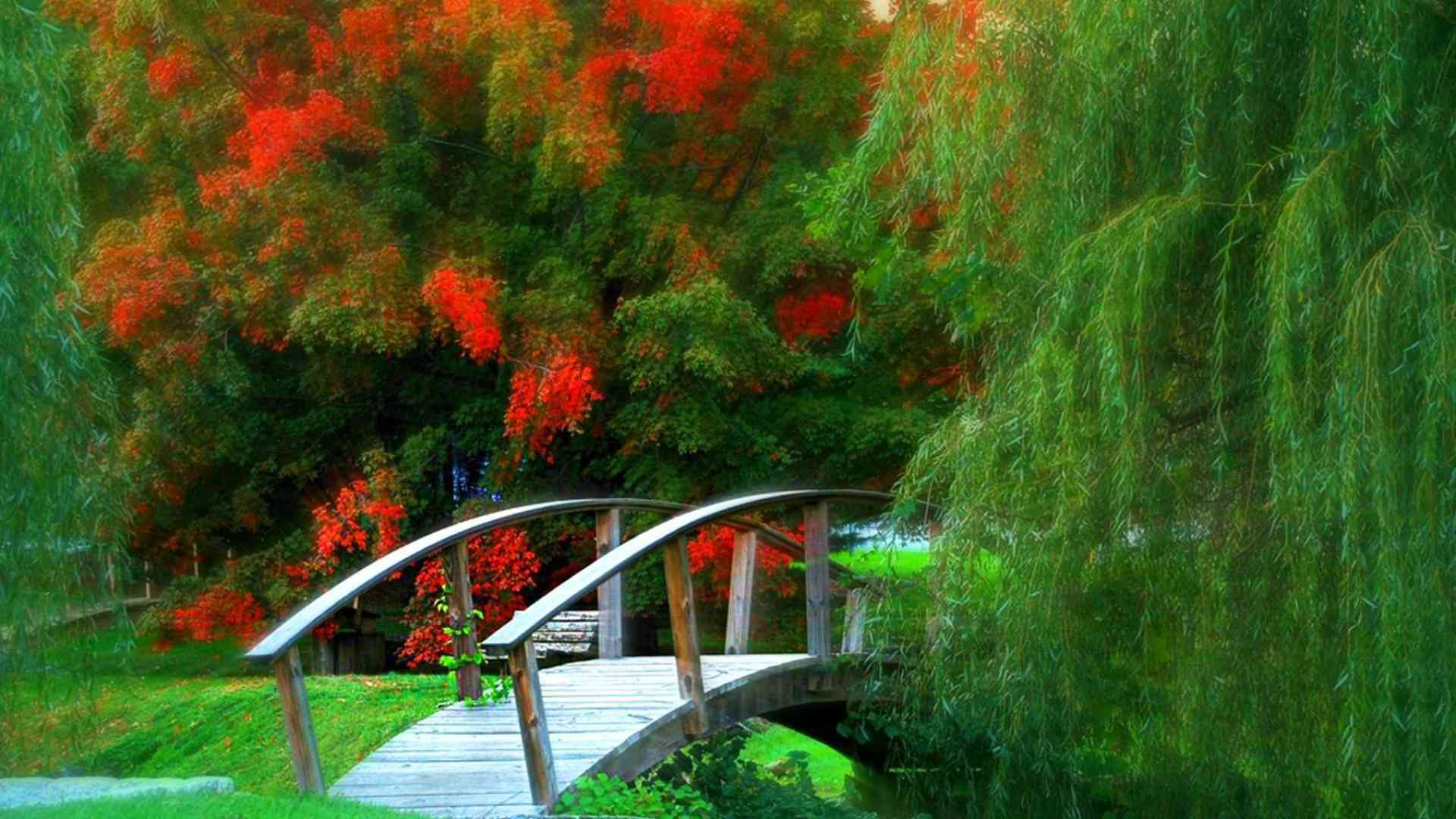 Free autumn wallpaper featuring a bridge by fall trees with colorful red flowers.