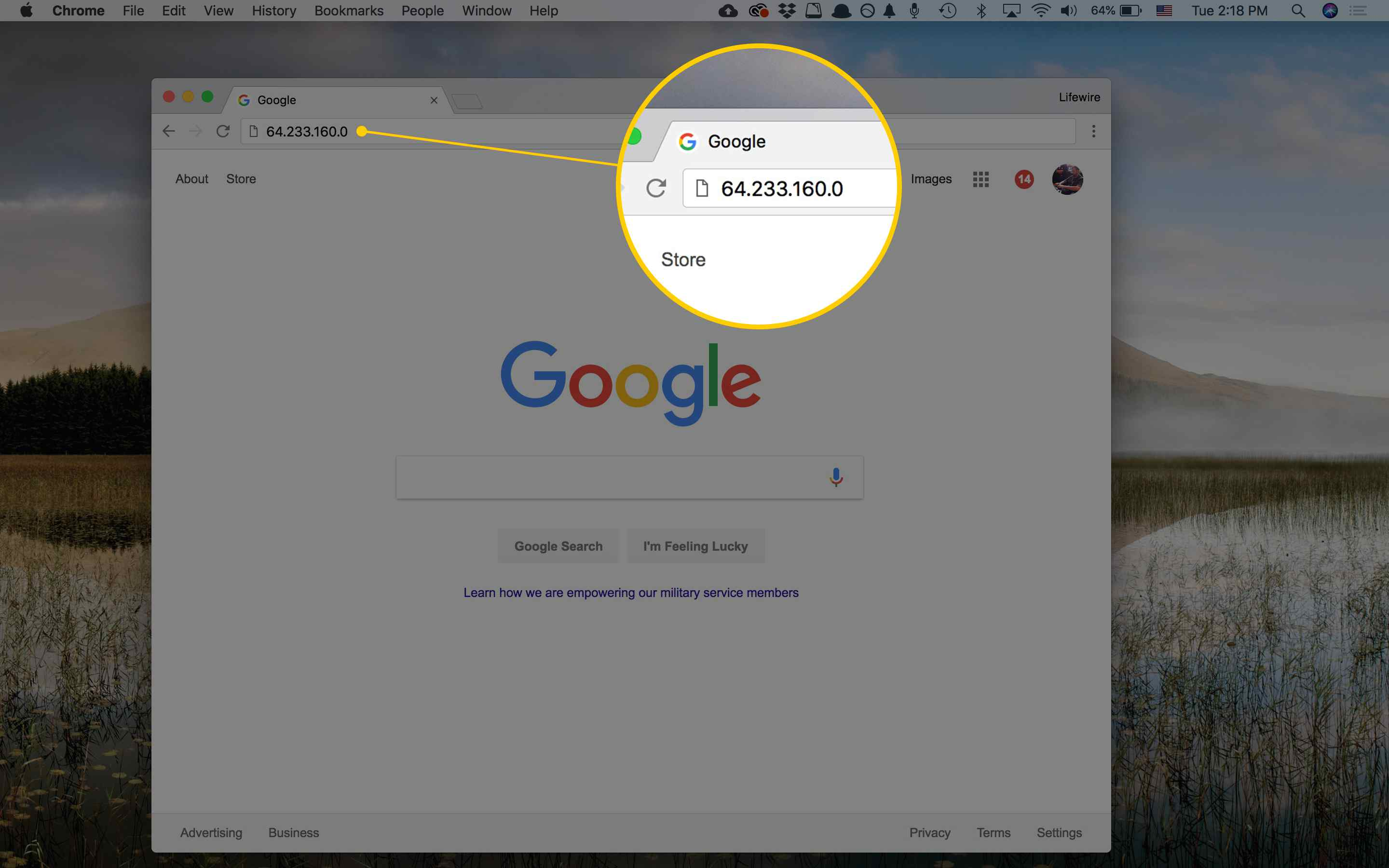how to change ip address on chrome mac