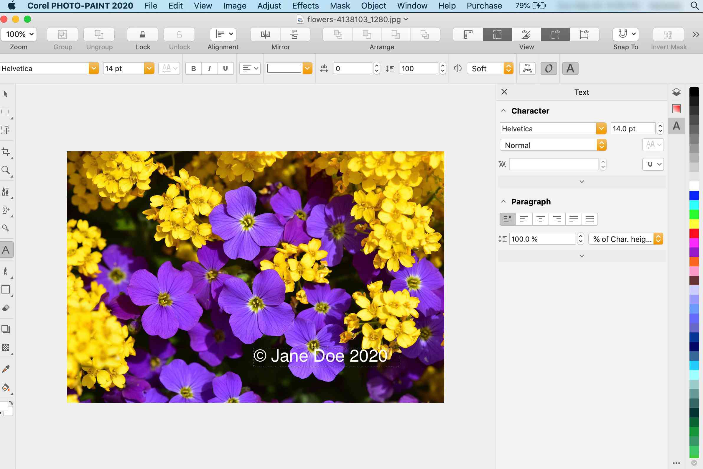 Typing the watermark text in Corel Photo-Paint