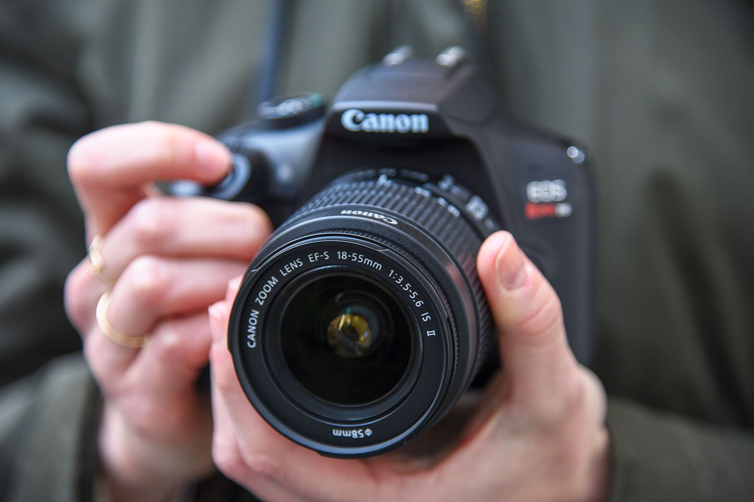 The 10 Best Entry Level DSLR Cameras for Beginners in 2019