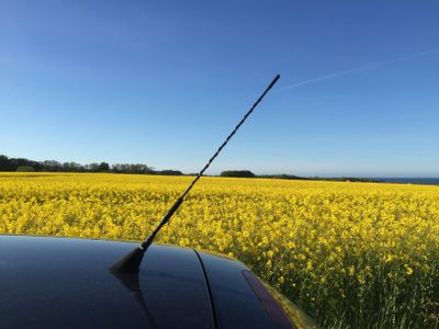 Reasons your car radio reception sucks car with antenna parked by flowering field against clear blue sky solutioingenieria Images