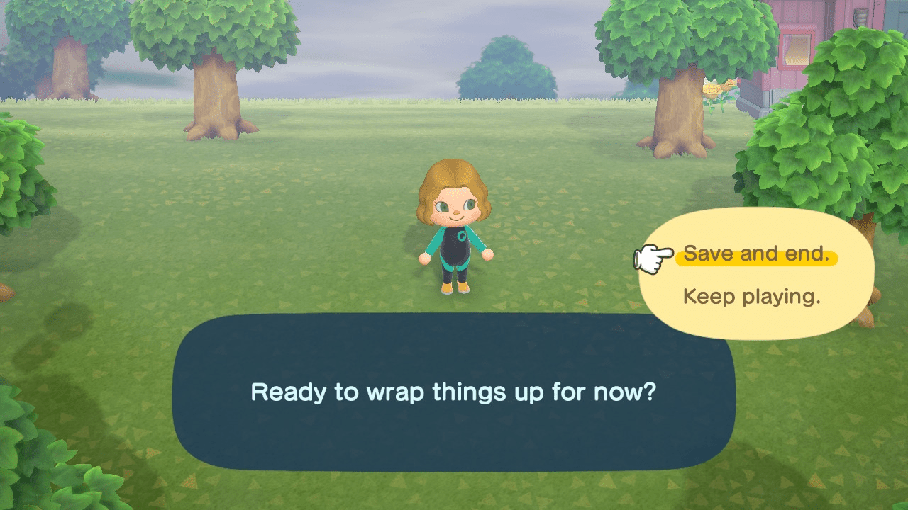 The saving dialog on ANCH.