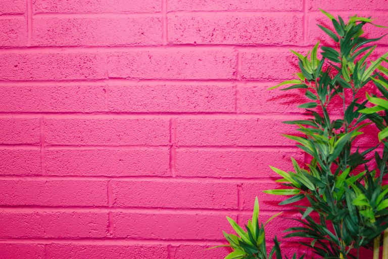 A fuchsia-painted wall.