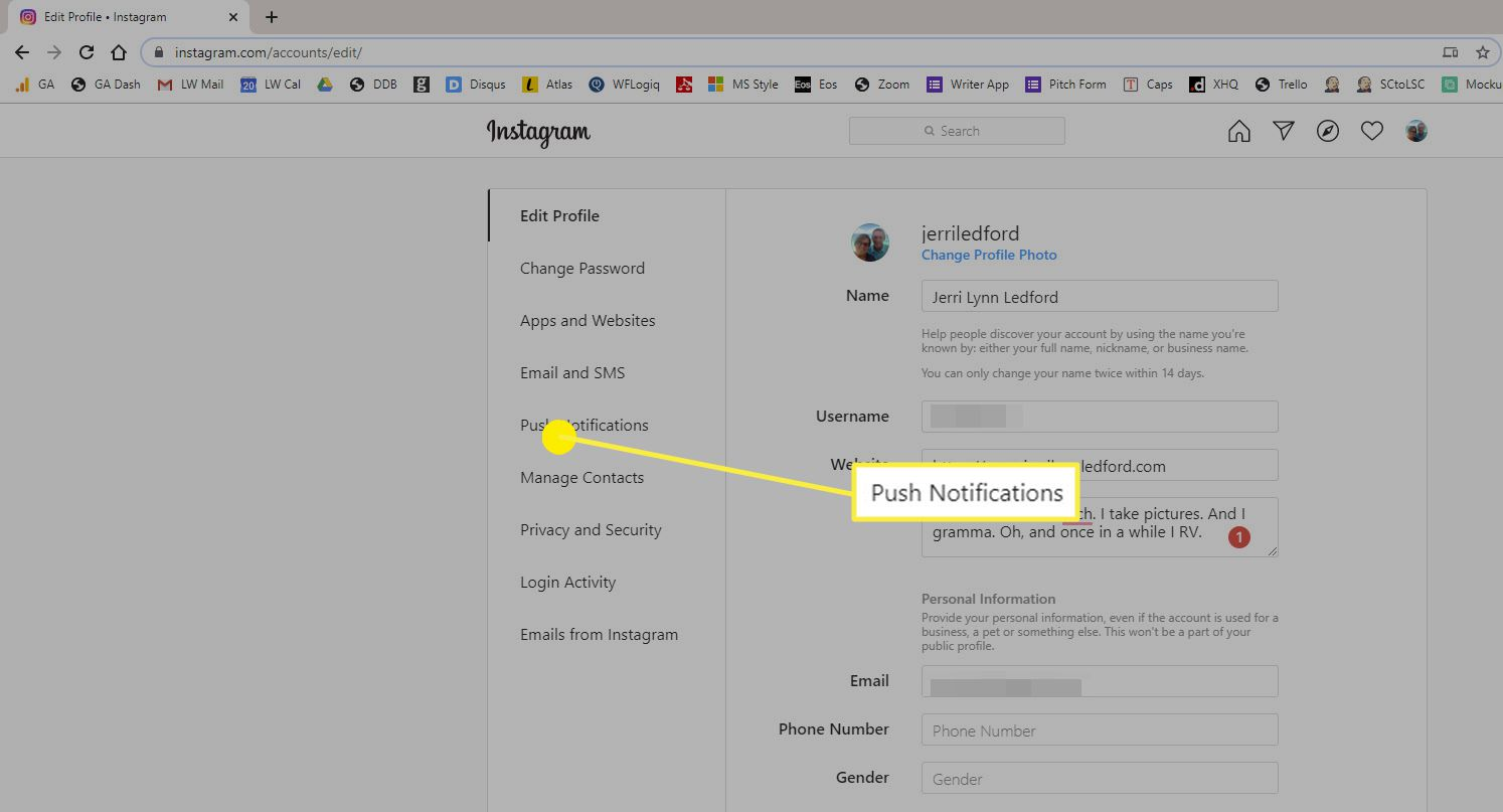 The Push Notifications option on Instagram in a web browser.