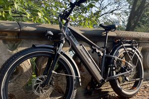 The RadCity 6 Plus eBike leaned against a concrete wall in the park.