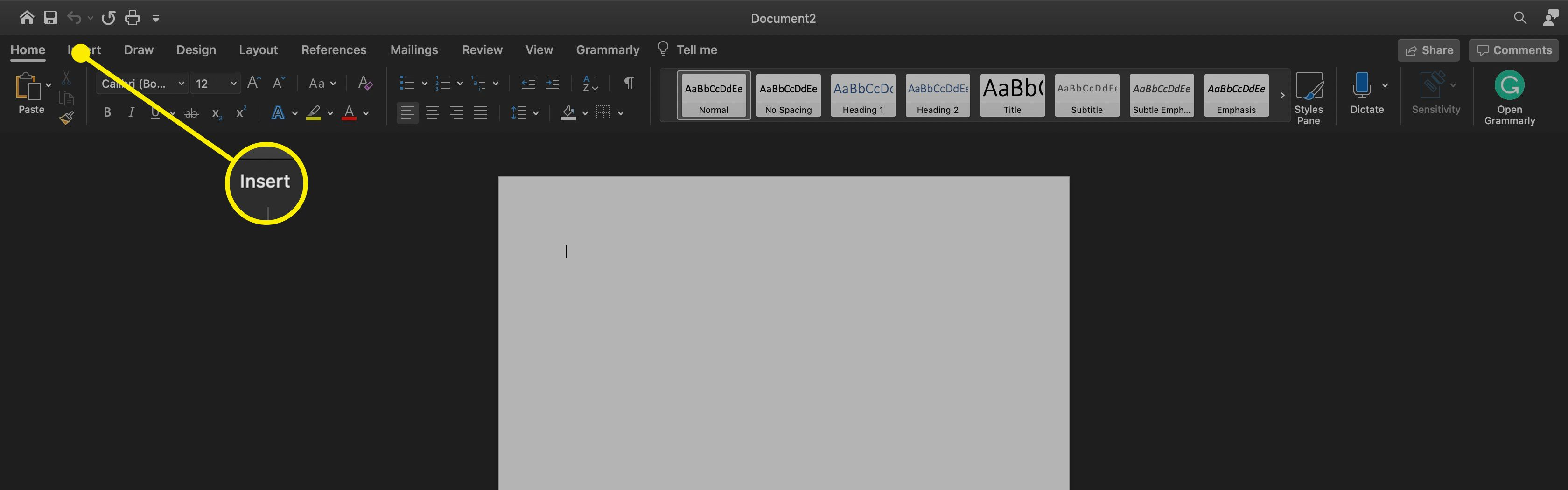 The Insert menu on MS Word for mac.