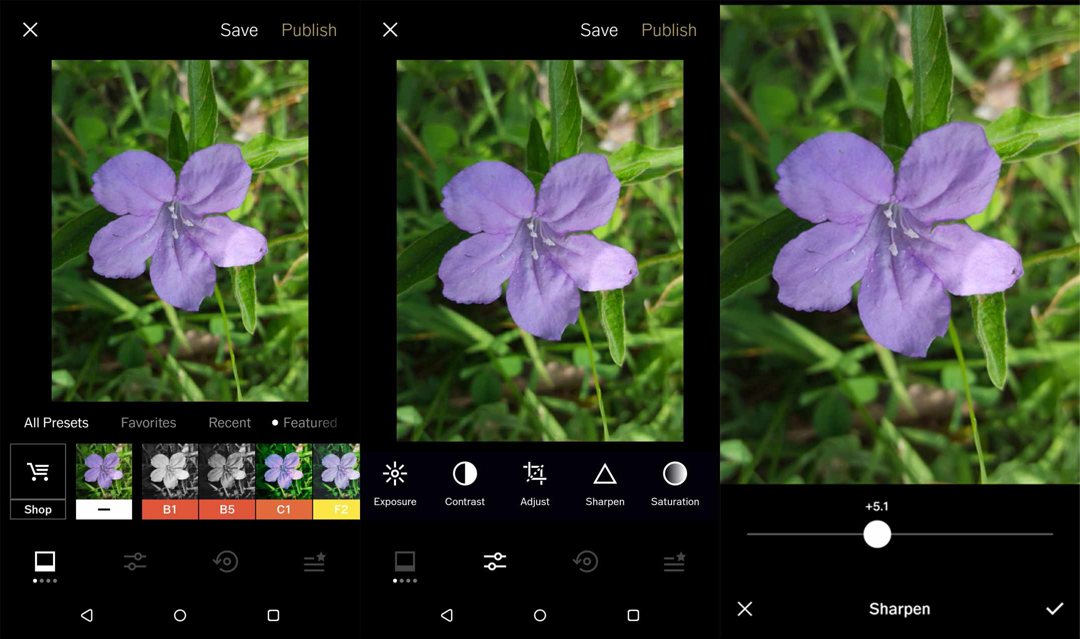 The 10 Best Apps to Fix Blurry Pictures
