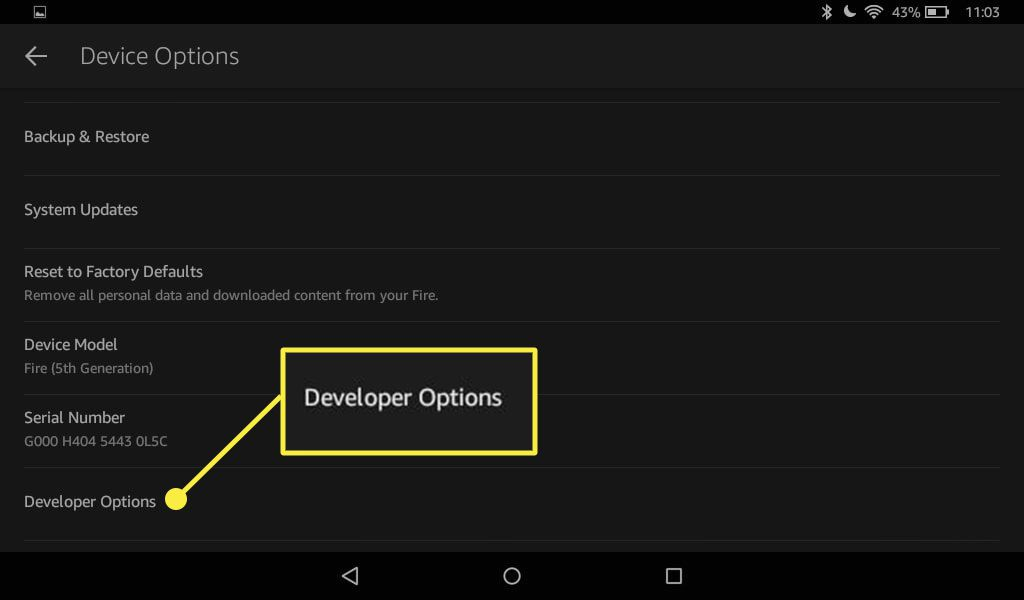 A Kindle Fire's Device Options with the Developer Options visible.