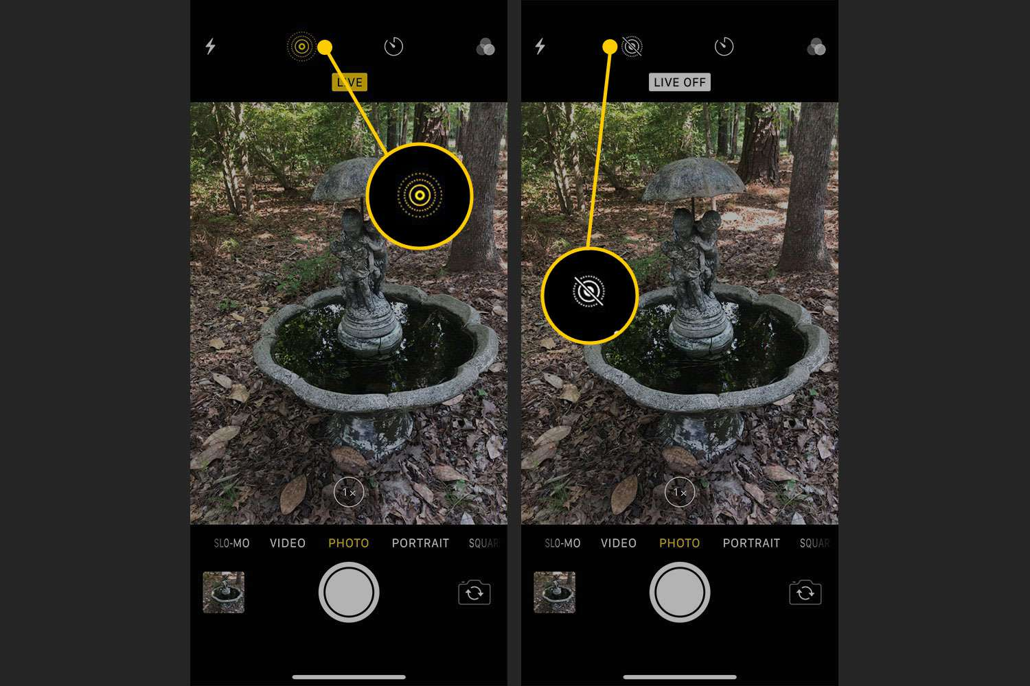 iOS Camera app with the Live Photo indicator highlighted