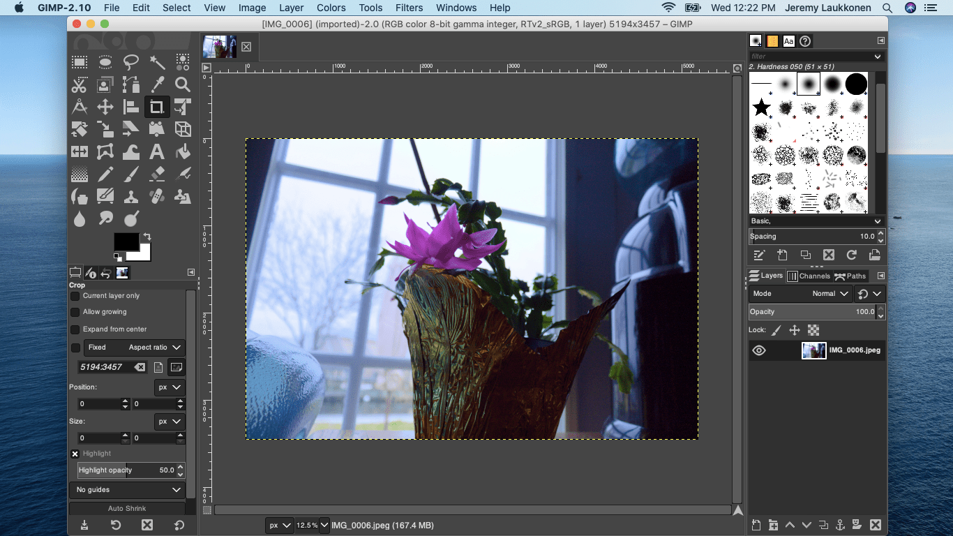 A screenshot of the Gimp photo editor on macOS.