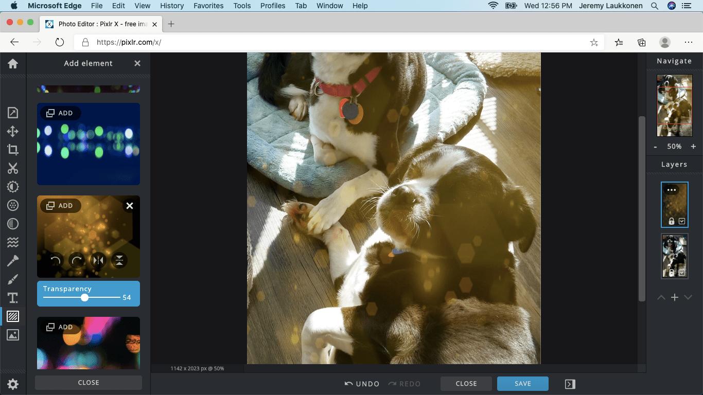 A screenshot of Pixlr X on macOS.