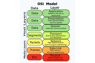 Chart of the OSI Model