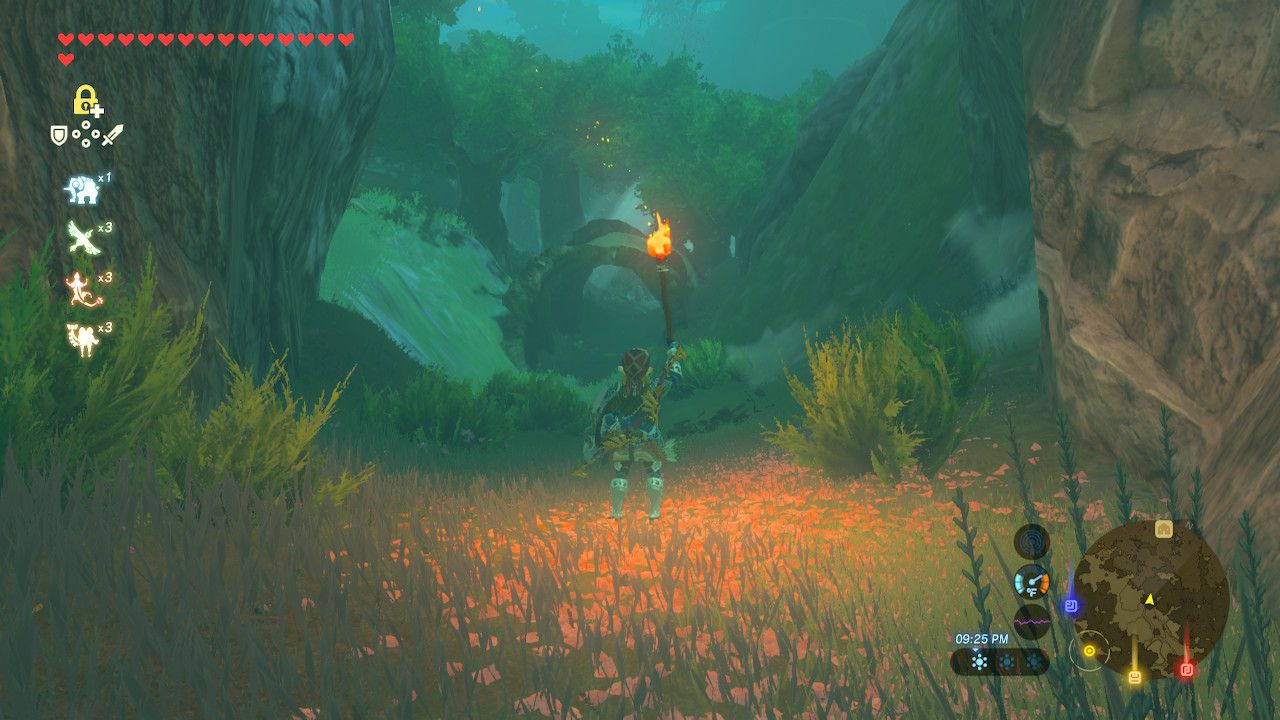 Arriving at Korok Forest in The Legend of Zelda: Breath of the Wild.
