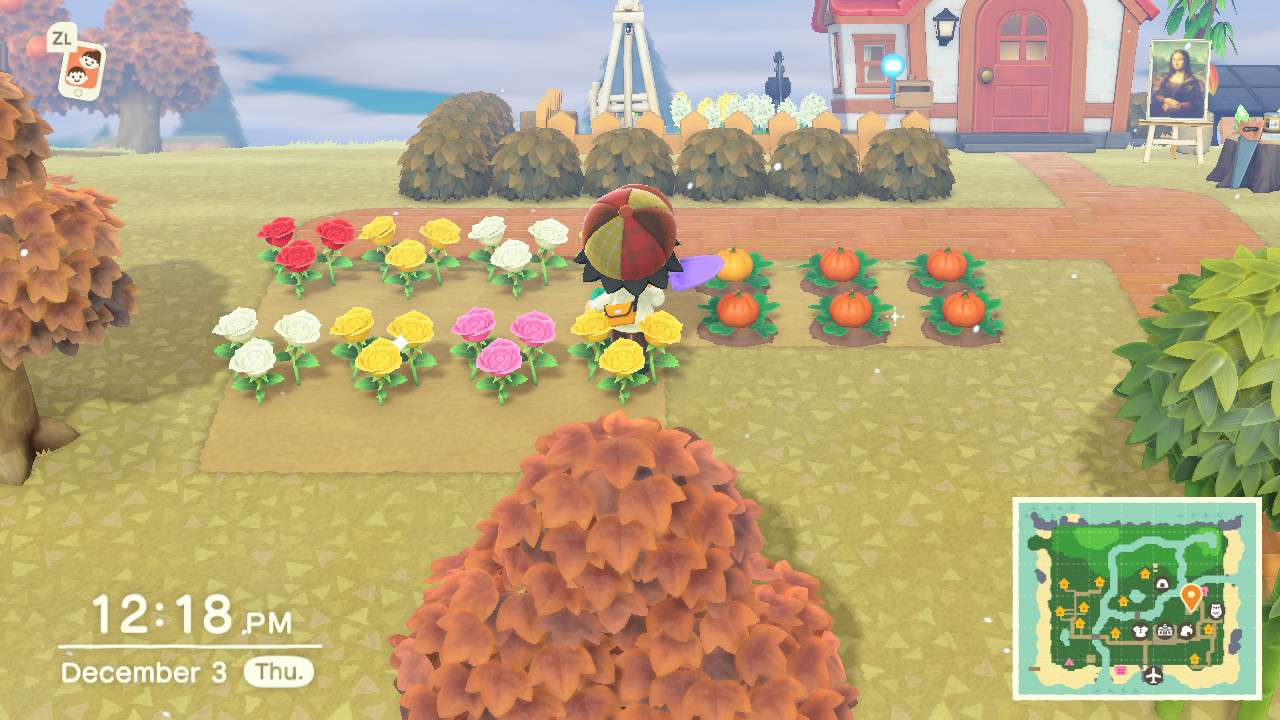 Animal Crossing flower bed in rows for breeding