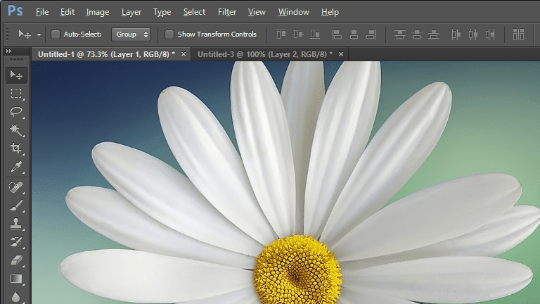 Screenshot of a flower in Adobe Photoshop