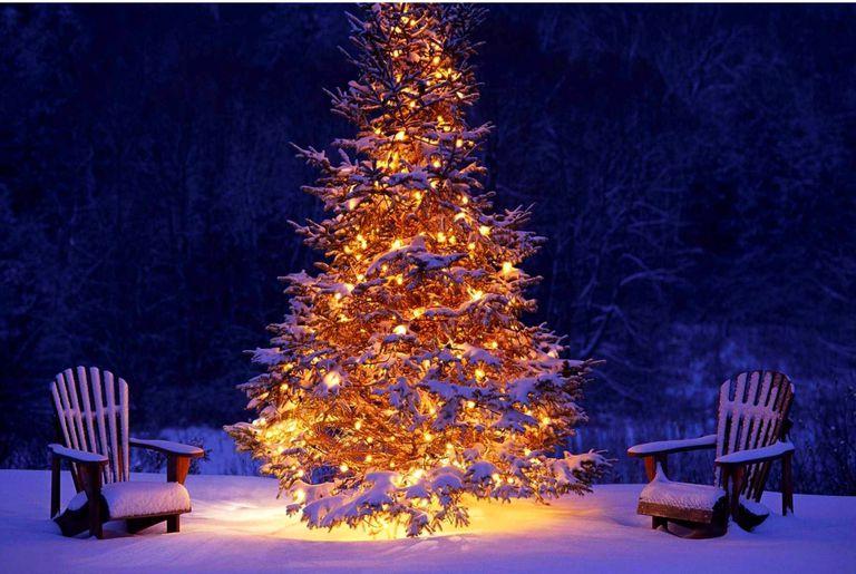Christmas Tree Mac Wallpaper