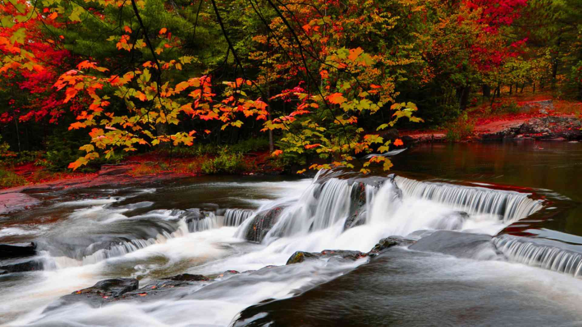 Free autumn wallpaper featuring a river surrounded by colorful trees and bushes.