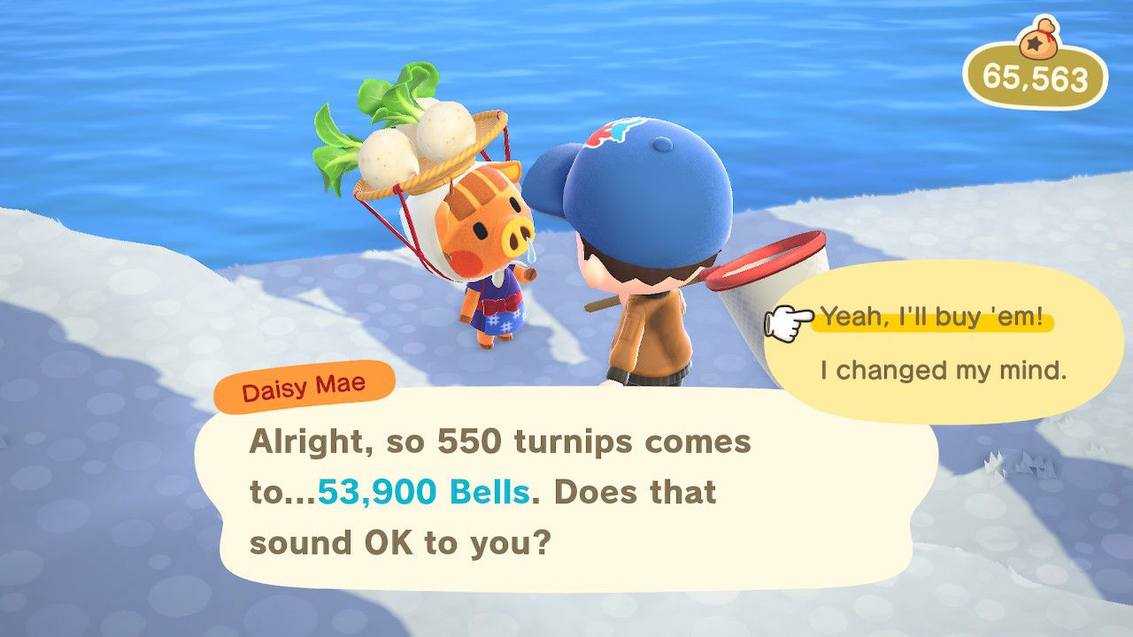 Confirming turnip purchase in Animal Crossing: New Horizons